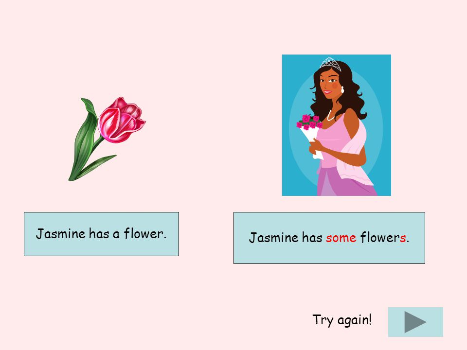 Jasmine has some flowers. Try again!