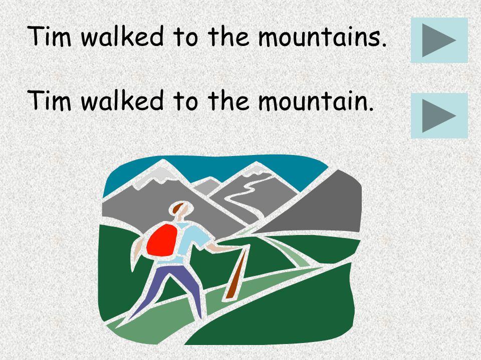 Tim walked to the mountains. Tim walked to the mountain.