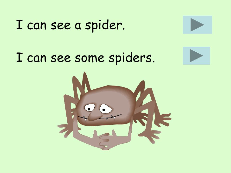 I can see a spider. I can see some spiders.