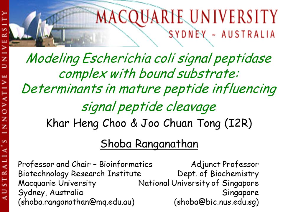 Modeling Escherichia coli signal peptidase complex with bound substrate: Determinants in mature peptide influencing signal peptide cleavage Khar Heng Choo & Joo Chuan Tong (I2R) Shoba Ranganathan Professor and Chair – Bioinformatics Adjunct Professor Biotechnology Research InstituteDept.
