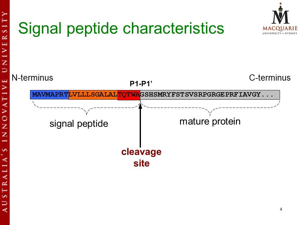 4 signal peptide mature protein cleavage site N-terminusC-terminus MAVMAPRTLVLLLSGALALTQTWAGSHSMRYFSTSVSRPGRGEPRFIAVGY...