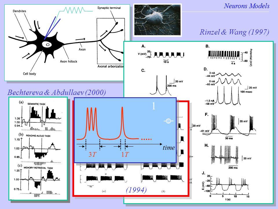 Neurons Models Neurons models Rinzel & Wang (1997) Bechtereva & Abdullaev (2000) (1994) time 1T1T3T3T 1 f