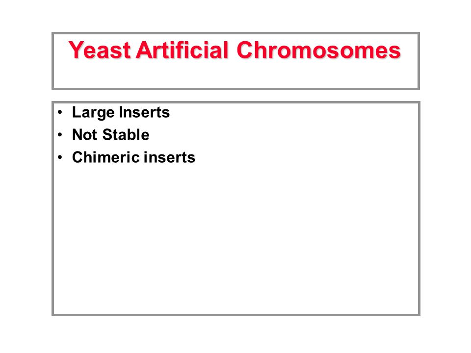 Large Inserts Not Stable Chimeric inserts Yeast Artificial Chromosomes