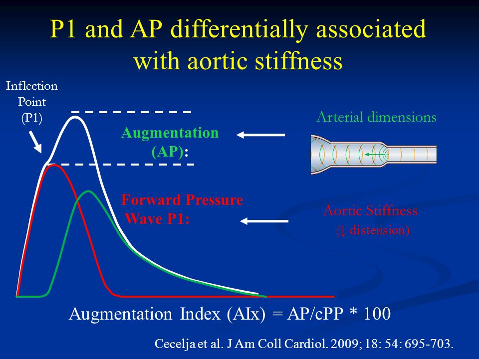 P1 and AP differentially associated with aortic stiffness Arterial dimensions Augmentation (AP): Forward Pressure Wave P1: Aortic Stiffness ( ↓ distension) Cecelja et al.