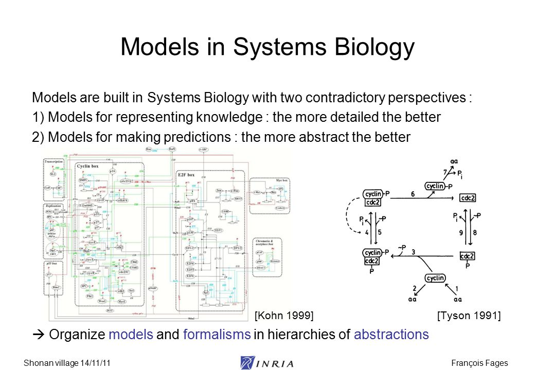 François FagesShonan village 14/11/11 Models in Systems Biology Models are built in Systems Biology with two contradictory perspectives : 1) Models fo