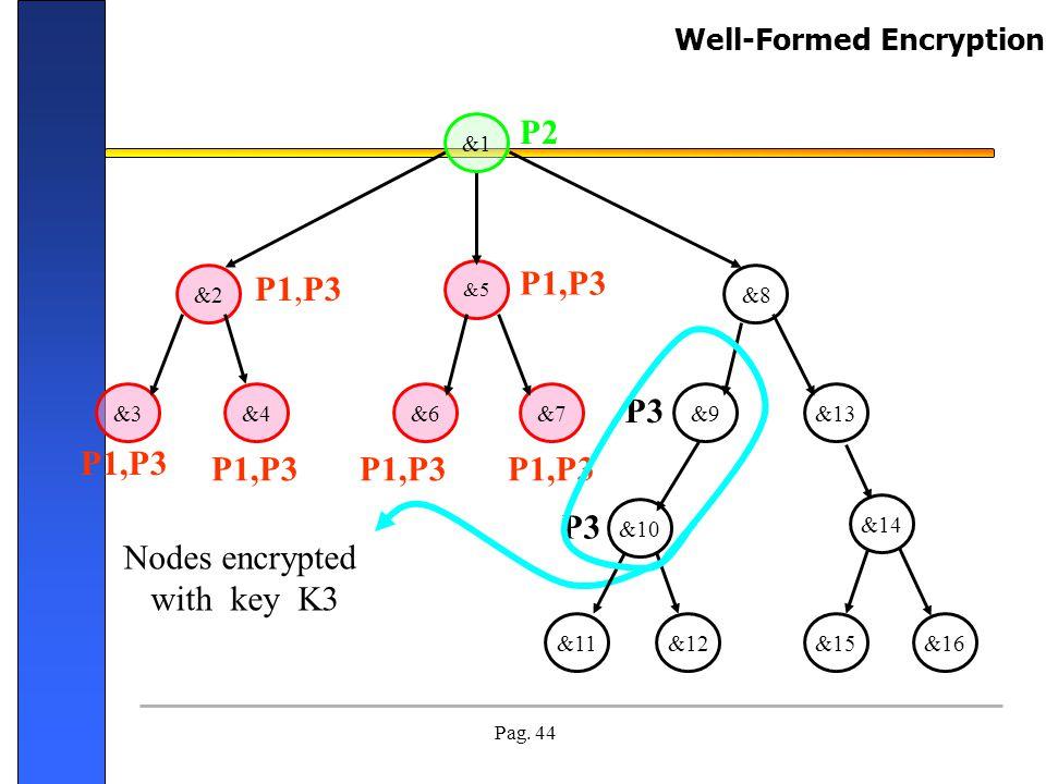 Pag. 44 Nodes encrypted with key K3 &13&7&6&4&3 &2&8 &5 &12&11 &14 &15&16 P1,P3 P2 P1,P3 P3 P1,P3 &1 &9 &10 Well-Formed Encryption