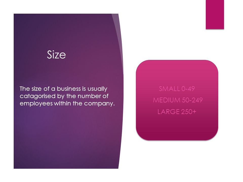 Size SMALL 0-49 MEDIUM 50-249 LARGE 250+ SMALL 0-49 MEDIUM 50-249 LARGE 250+ The size of a business is usually catagorised by the number of employees