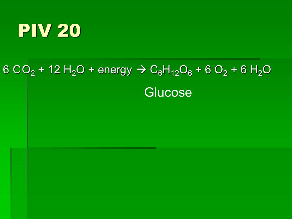 PIV 20 6 O 2 + 12 H 2 O + energy  C 6 H 12 O 6 + 6 O 2 + 6 H 2 O C Glucose
