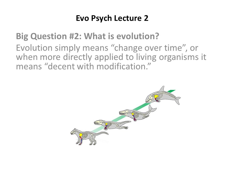 Evo Psych Lecture 2 Big Question #2: What is evolution.