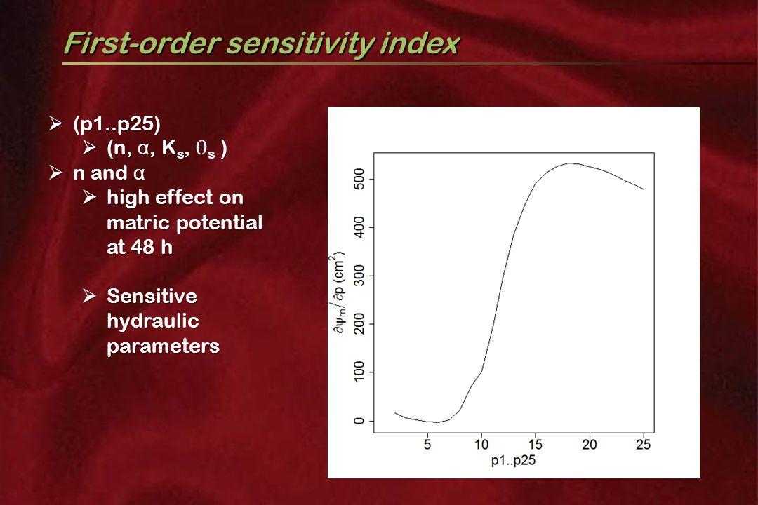 First-order sensitivity index  (p1..p25)  (n, α, K s )  (n, α, K s, θ s )  n and α  high effect on matric potential at 48 h  Sensitive hydraulic parameters