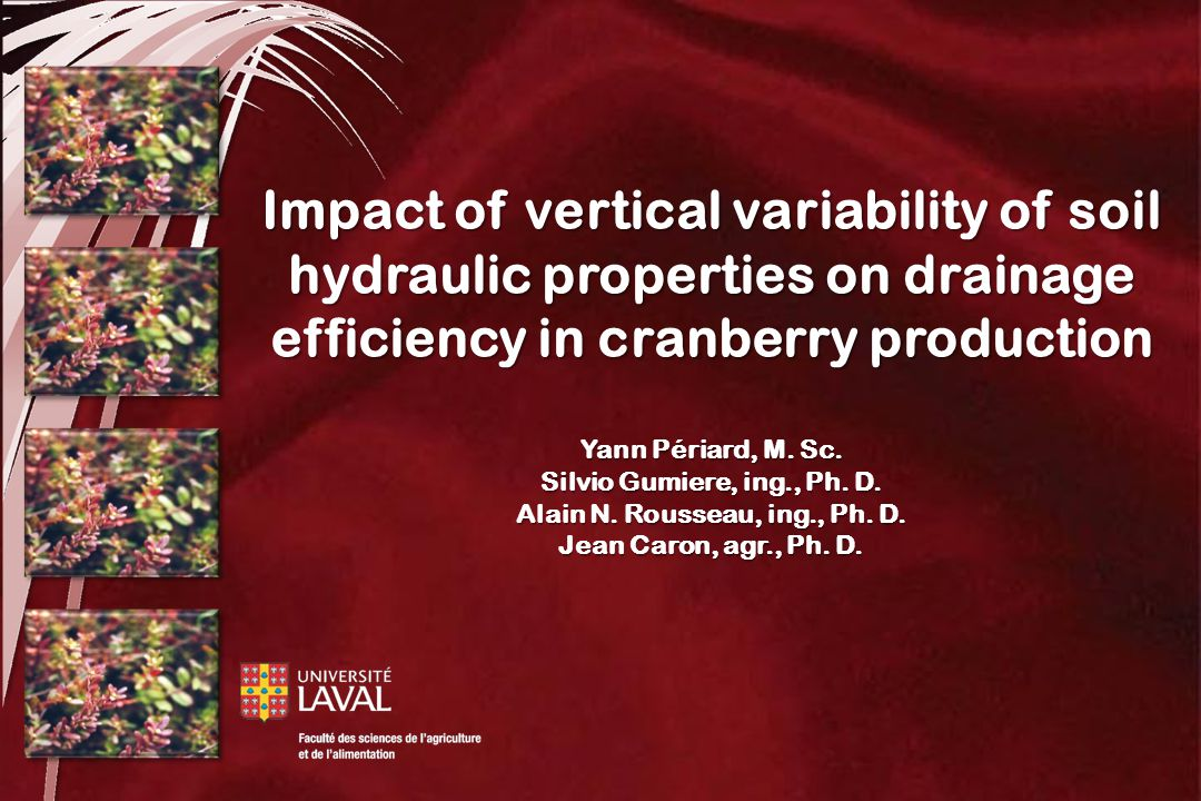 Impact of vertical variability of soil hydraulic properties on drainage efficiency in cranberry production Yann Périard, M.