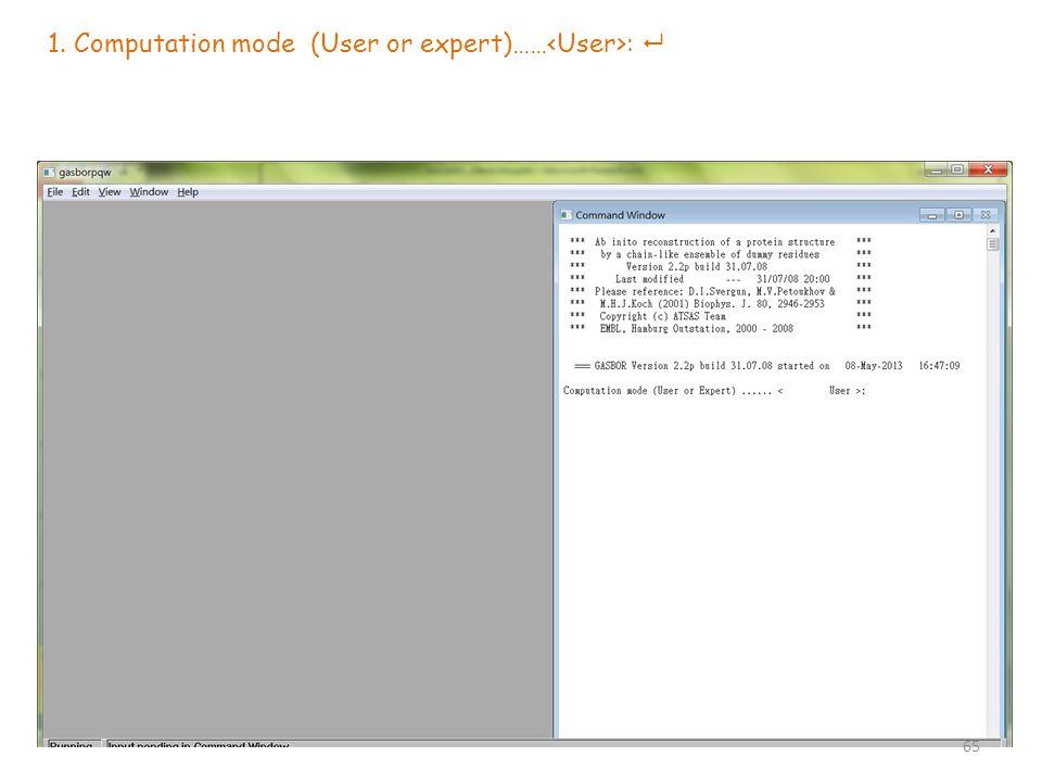 1. Computation mode (User or expert)…… :  65