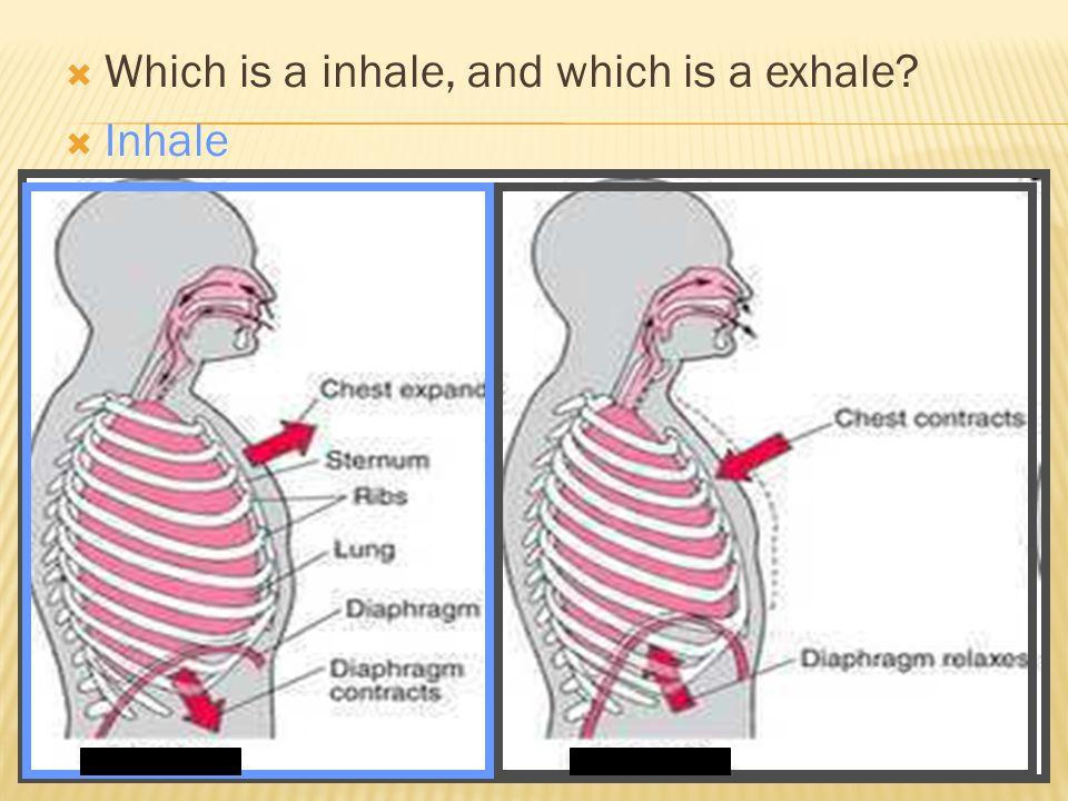  Inhale AB AB