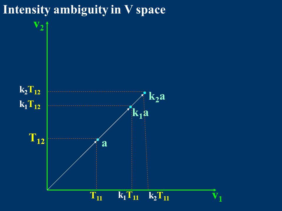 Intensity ambiguity in V space v1v1 v2v2 a k1ak1a k2ak2a T 11 T 12 k 1 T 11 k 1 T 12 k 2 T 11 k 2 T 12