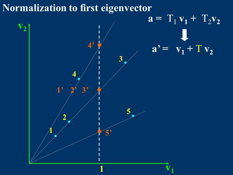 v1v1 v2v2 1 1 2 4 3 5 a = T 1 v 1 + T 2 v 2 a' = v 1 + T v 2 1'2'3' 4' 5' Normalization to first eigenvector