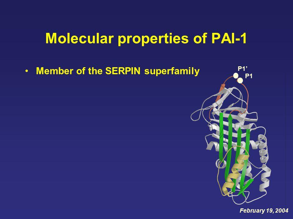 Molecular properties of PAI-1 Member of the SERPIN superfamily P1' P1 February 19, 2004