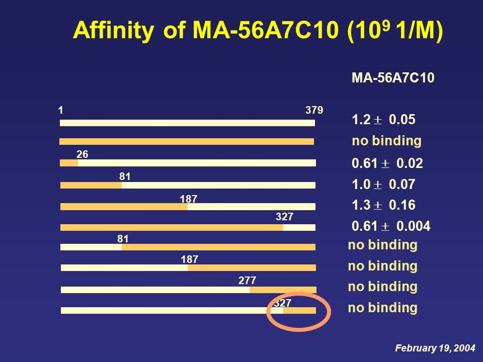 MA-56A7C10 1.2  0.05 no binding 3791 Affinity of MA-56A7C10 (10 9 1/M) 26 0.61  0.02 1.0  0.07 1.3  0.16 0.61  0.004 187 81 327 81 277 187 327 no binding February 19, 2004