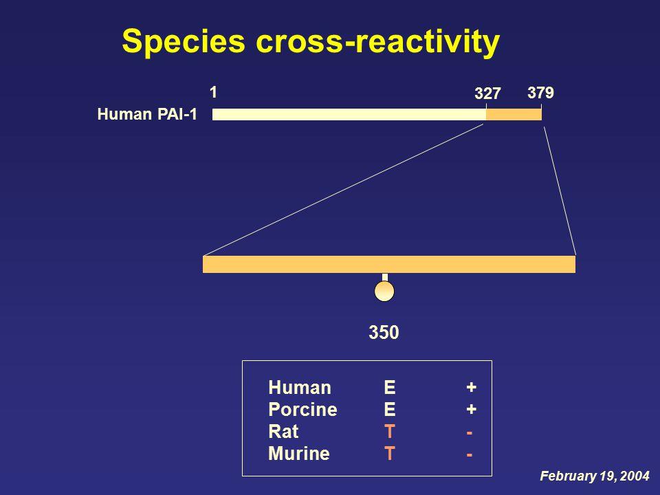 Species cross-reactivity 1 379 Human PAI-1 327 Human + Porcine + Rat - Murine - EETTEETT 350 February 19, 2004
