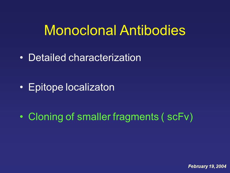 Monoclonal Antibodies Detailed characterization Epitope localizaton Cloning of smaller fragments ( scFv) February 19, 2004