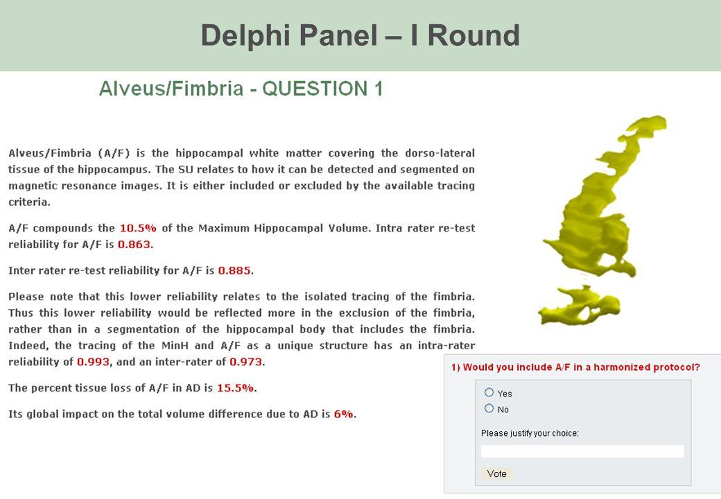 Delphi Panel – I Round