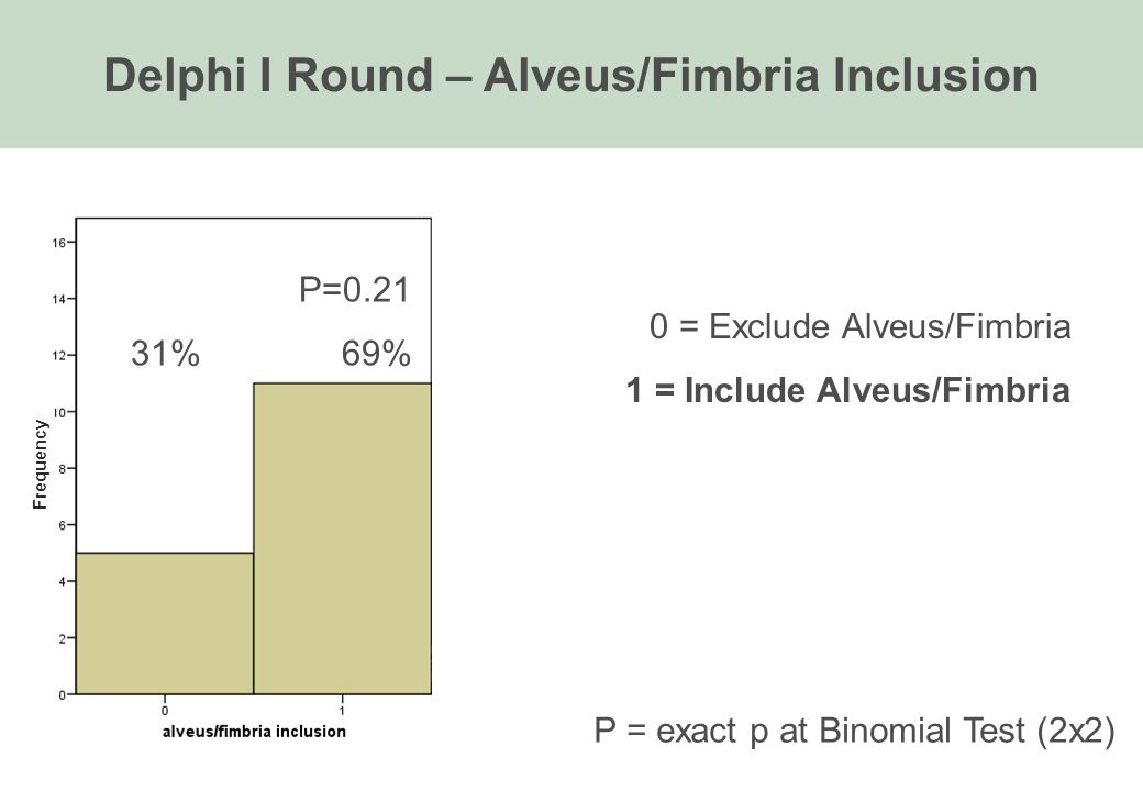 Delphi I Round – Alveus/Fimbria Inclusion P=0.21 31%69% P = exact p at Binomial Test (2x2) 0 = Exclude Alveus/Fimbria 1 = Include Alveus/Fimbria Frequency