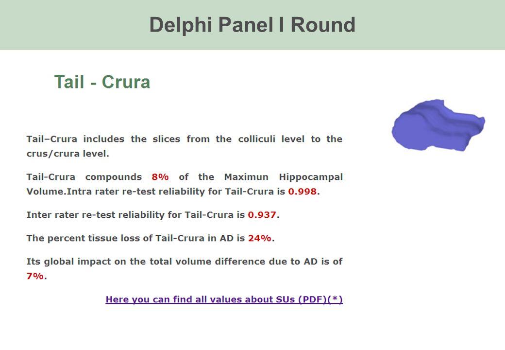Delphi Panel I Round