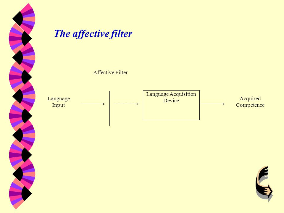 The Affective Filter Hypothesis w Motivation w Self-confidence w Anxiety w Lower affective filter will go further