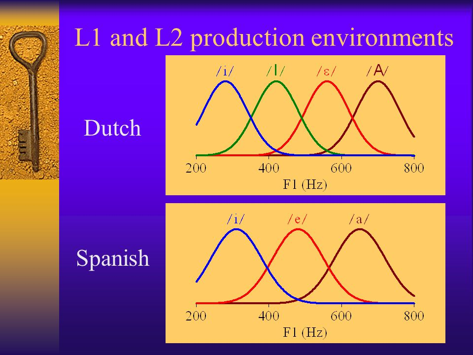 L1 and L2 production environments Dutch Spanish