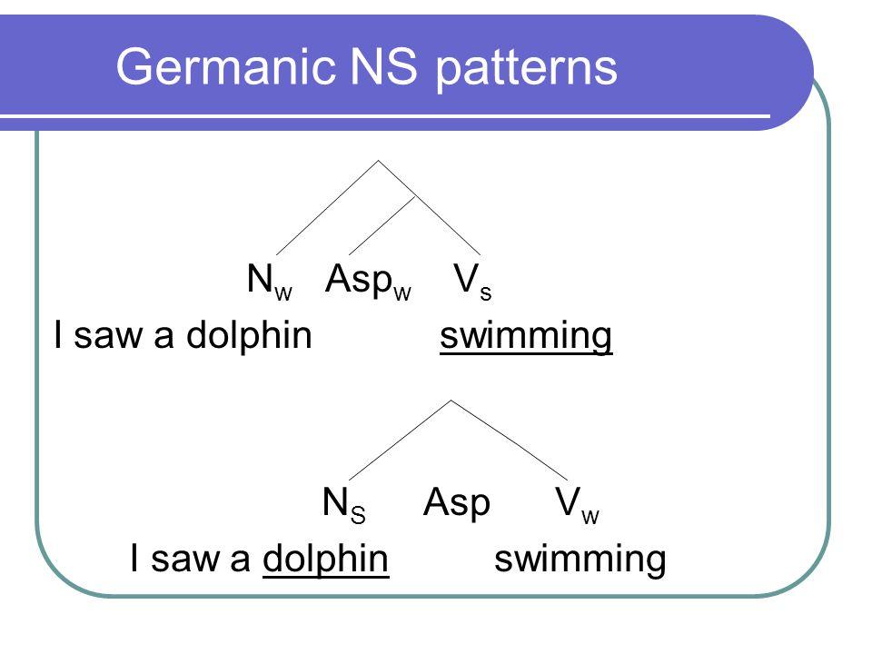 Germanic NS patterns N w Asp w V s I saw a dolphin swimming N S Asp V w I saw a dolphin swimming