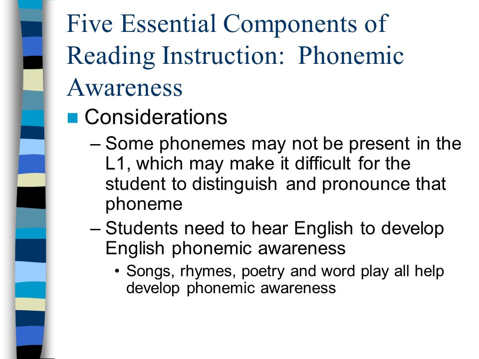 Five Essential Components of Reading Instruction: Phonemic Awareness Considerations –Some phonemes may not be present in the L1, which may make it dif