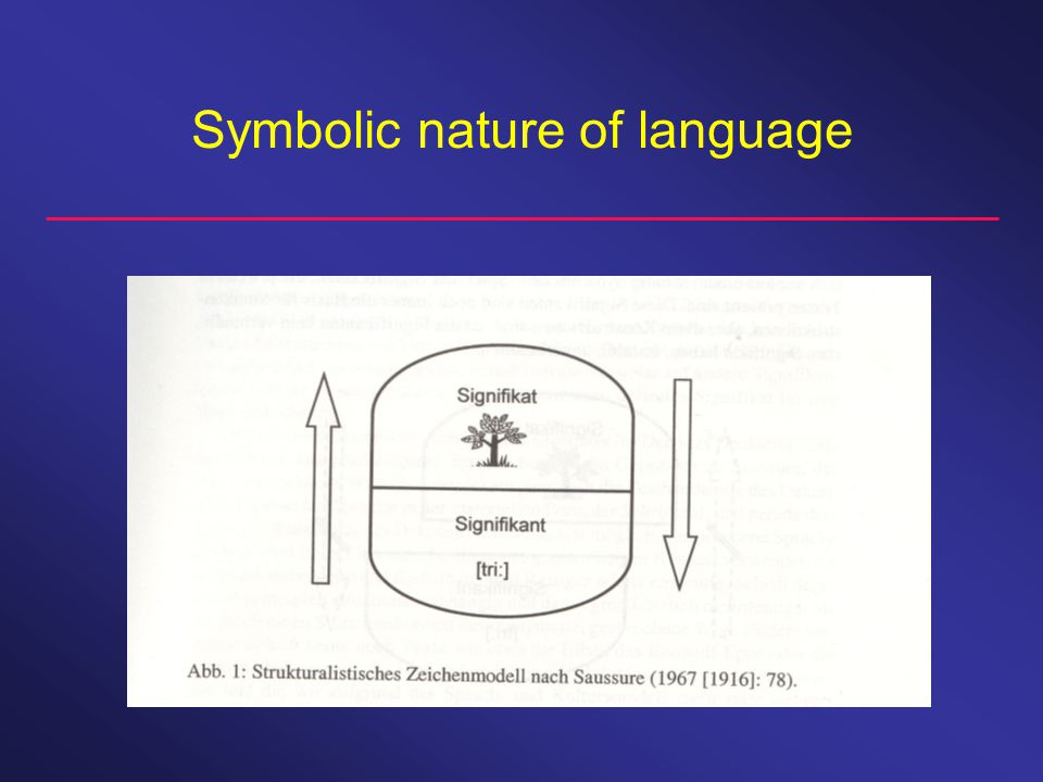 Symbolic nature of language