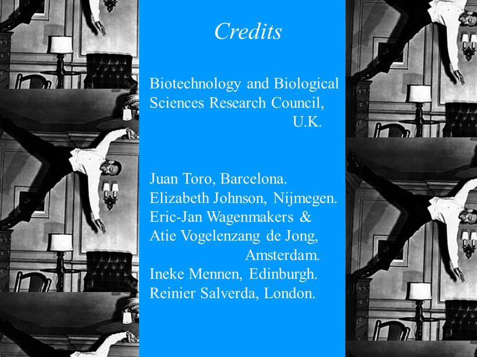 Credits Biotechnology and Biological Sciences Research Council, U.K. Juan Toro, Barcelona. Elizabeth Johnson, Nijmegen. Eric-Jan Wagenmakers & Atie Vo