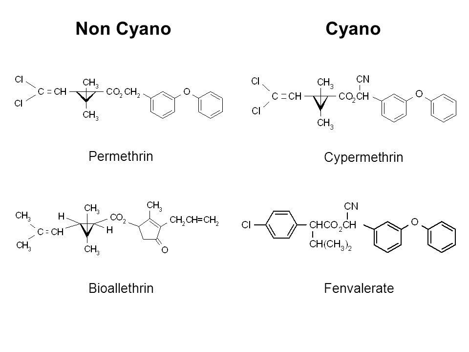 Bioallethrin Cypermethrin Fenvalerate Permethrin Non CyanoCyano