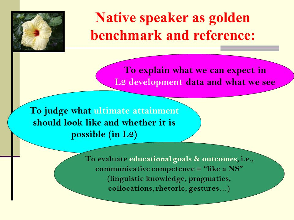 Native speaker as golden benchmark and reference: To judge what ultimate attainment should look like and whether it is possible (in L2) To explain what we can expect in L2 development data and what we see To evaluate educational goals & outcomes, i.e., communicative competence = like a NS (linguistic knowledge, pragmatics, collocations, rhetoric, gestures…)