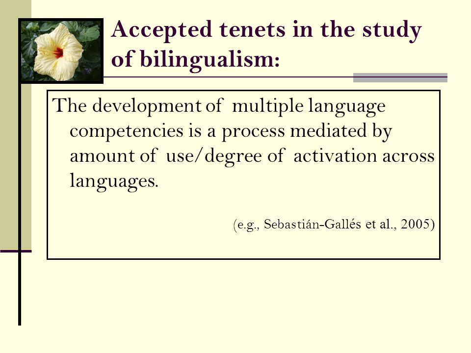 Accepted tenets in the study of bilingualism: The development of multiple language competencies is a process mediated by amount of use/degree of activation across languages.