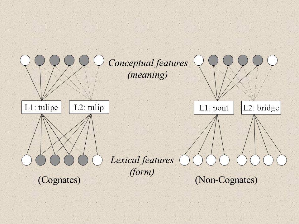 Conceptual features (meaning) Lexical features (form) L1: tulipe (Cognates)(Non-Cognates) L2: tulip L1: pontL2: bridge