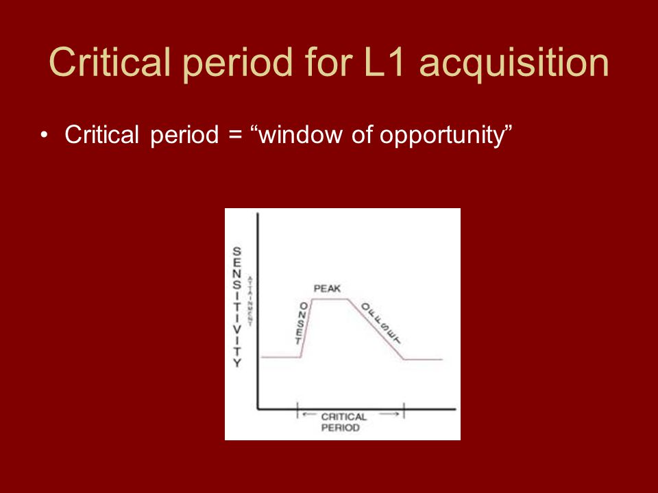 "Critical period for L1 acquisition Critical period = ""window of opportunity"""