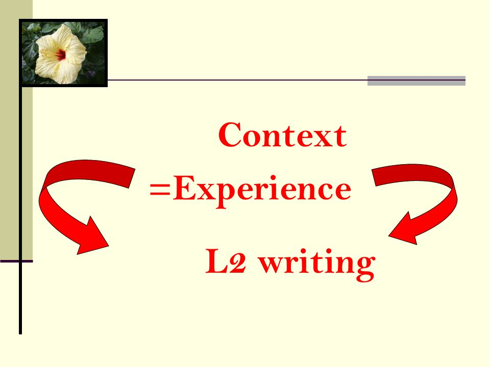 =Experience Context L2 writing