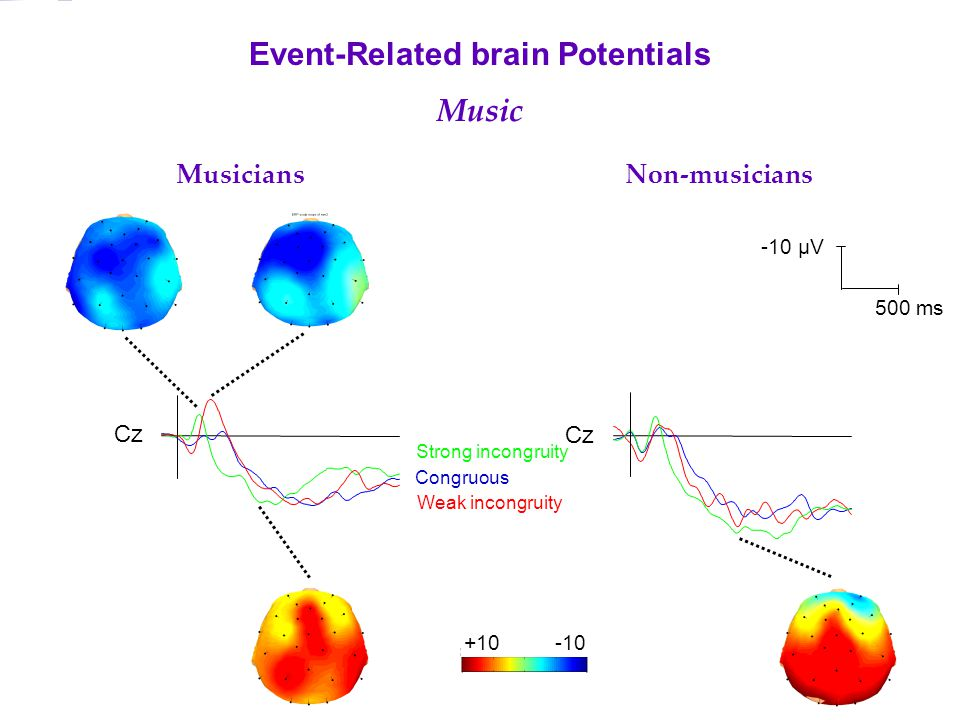 Cz Musicians Non-musicians Event-Related brain Potentials Music Congruous Weak incongruity Strong incongruity -10 µV 500 ms +10-10
