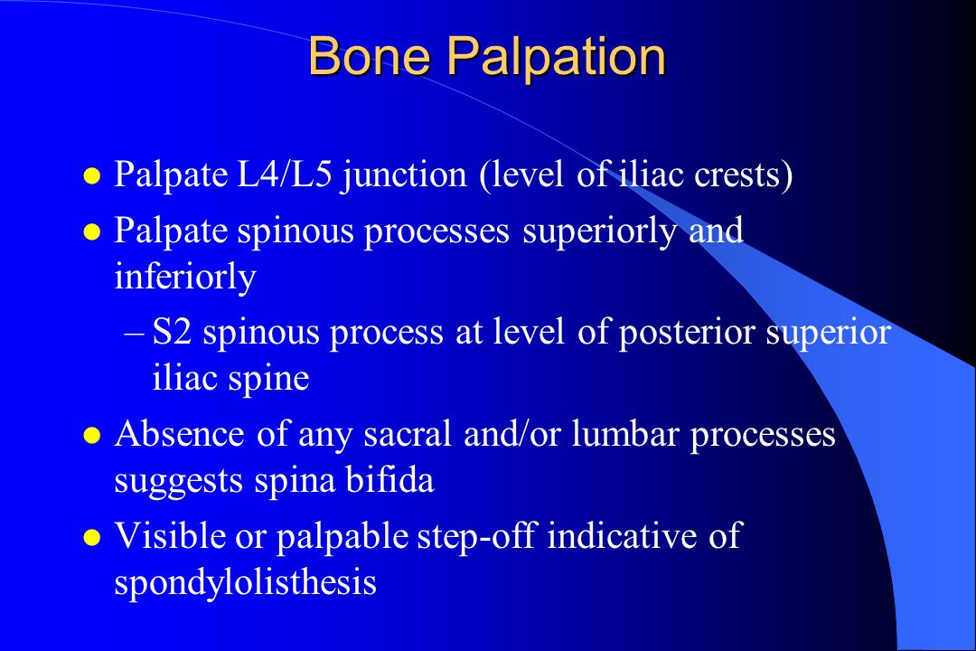 Bone Palpation l Palpate L4/L5 junction (level of iliac crests) l Palpate spinous processes superiorly and inferiorly –S2 spinous process at level of posterior superior iliac spine l Absence of any sacral and/or lumbar processes suggests spina bifida l Visible or palpable step-off indicative of spondylolisthesis