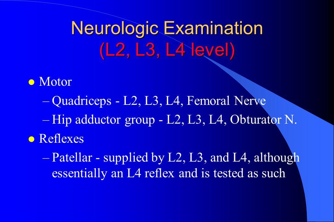 Neurologic Examination (L2, L3, L4 level) l Motor –Quadriceps - L2, L3, L4, Femoral Nerve –Hip adductor group - L2, L3, L4, Obturator N.