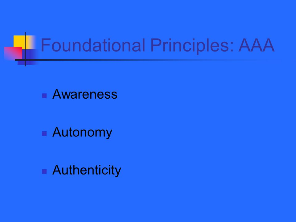 Foundational Principles: AAA Awareness Autonomy Authenticity