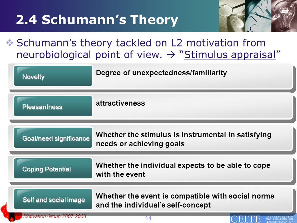 Motivation Group 2007-2008 2.4 Schumann's Theory  Schumann's theory tackled on L2 motivation from neurobiological point of view.