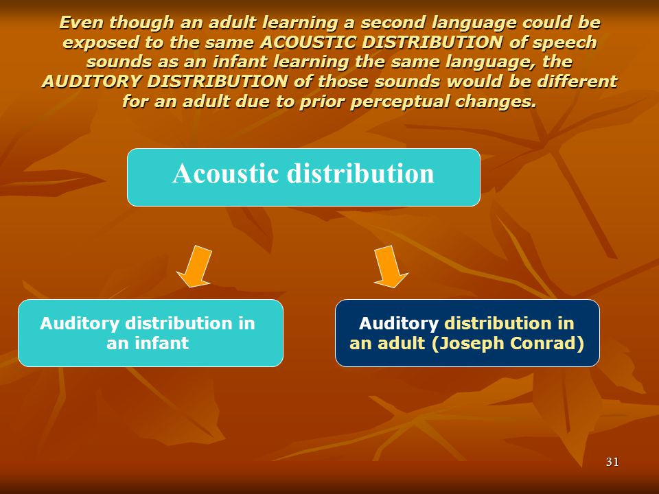 31 Even though an adult learning a second language could be exposed to the same ACOUSTIC DISTRIBUTION of speech sounds as an infant learning the same language, the AUDITORY DISTRIBUTION of those sounds would be different for an adult due to prior perceptual changes.