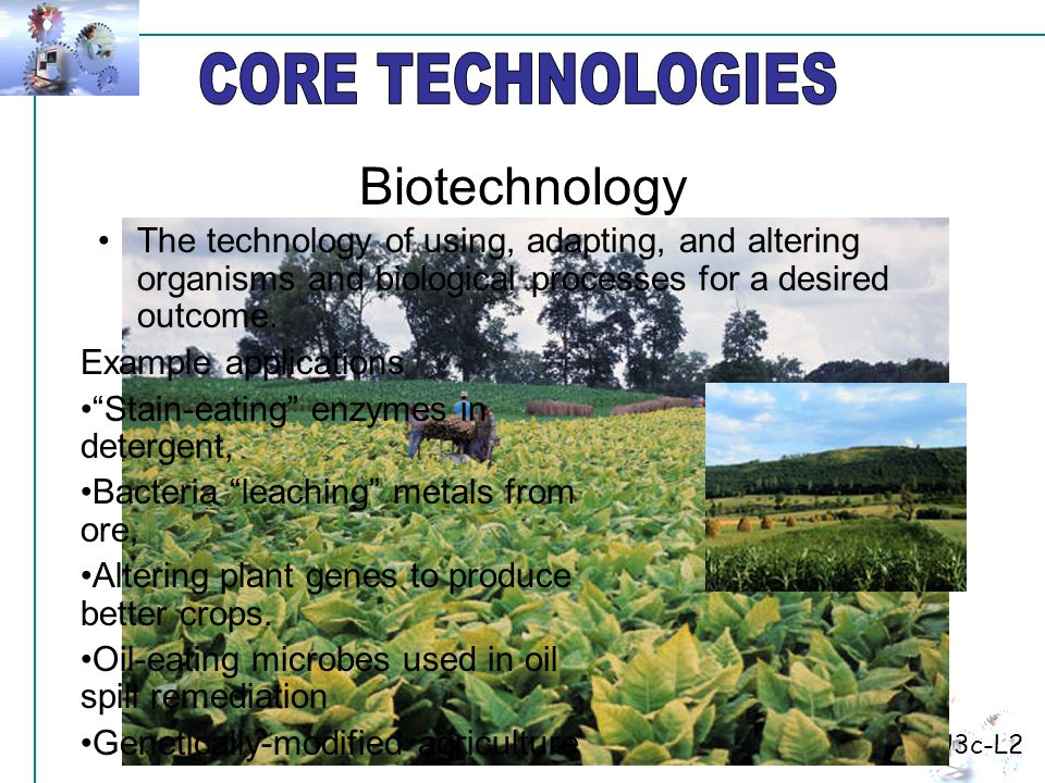 The technology of using, adapting, and altering organisms and biological processes for a desired outcome.