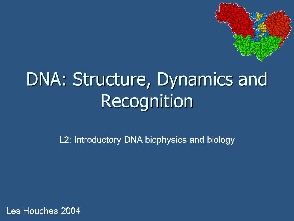 DNA: Structure, Dynamics and Recognition Les Houches 2004 L2: Introductory DNA biophysics and biology