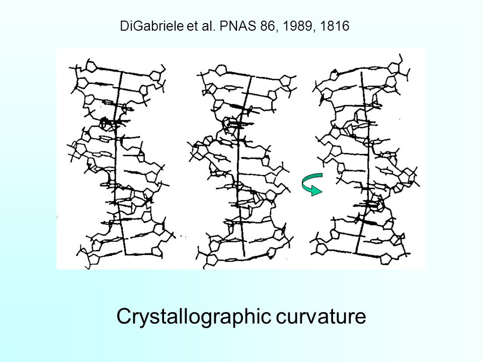Crystallographic curvature DiGabriele et al. PNAS 86, 1989, 1816