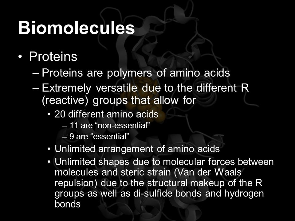 Biomolecules Proteins –Proteins are polymers of amino acids –Extremely versatile due to the different R (reactive) groups that allow for 20 different