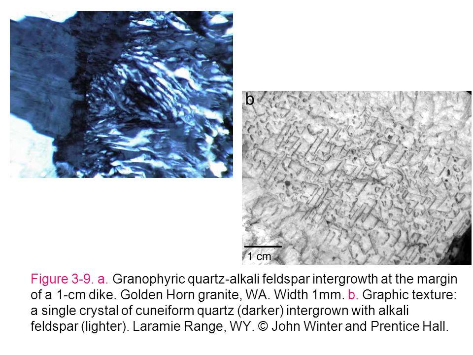 Figure 3-9. a. Granophyric quartz-alkali feldspar intergrowth at the margin of a 1-cm dike. Golden Horn granite, WA. Width 1mm. b. Graphic texture: a