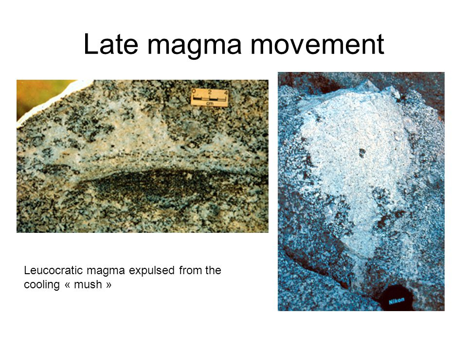 Late magma movement Leucocratic magma expulsed from the cooling « mush »